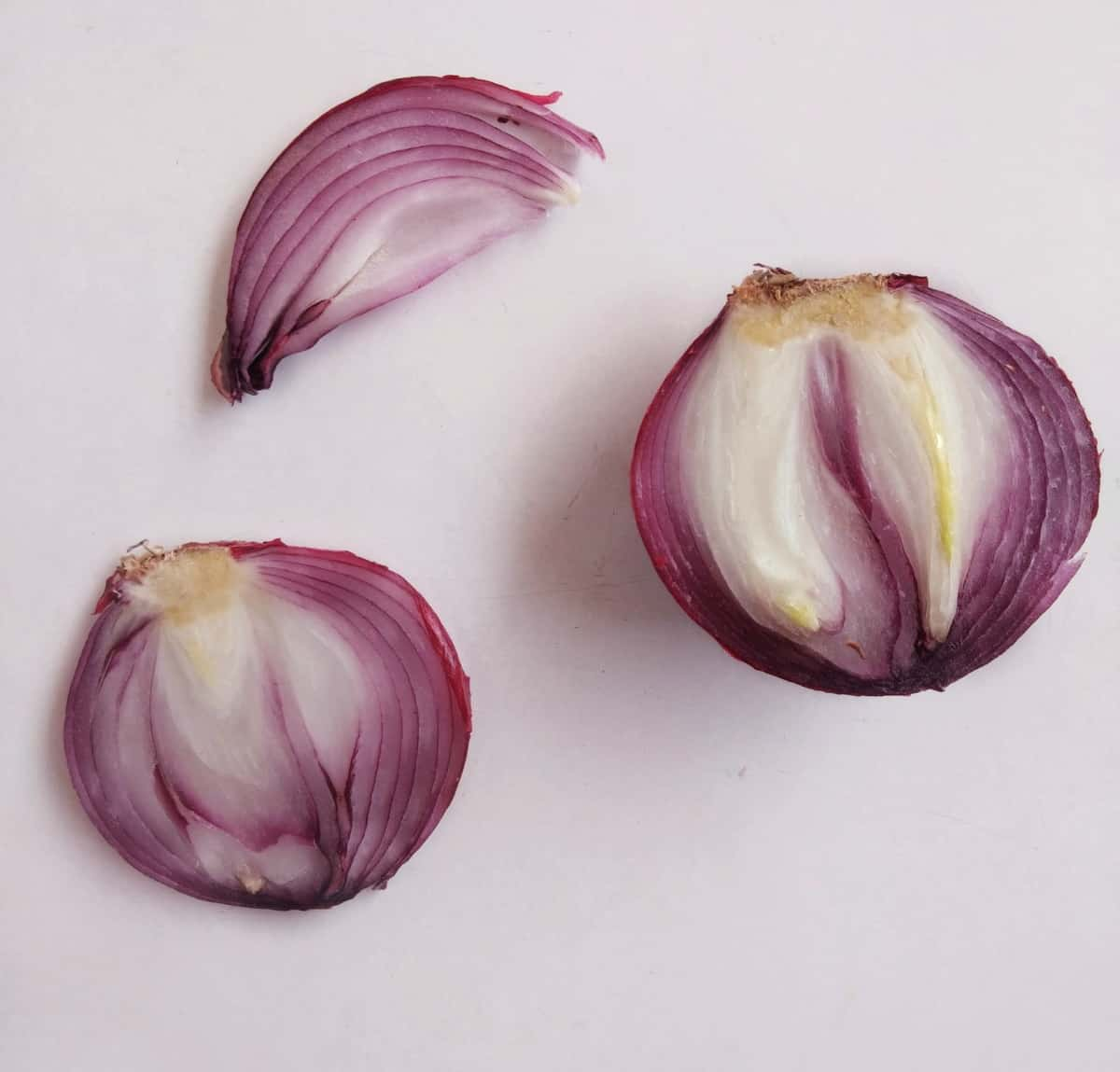 fertilizante casero con pieles de cebolla